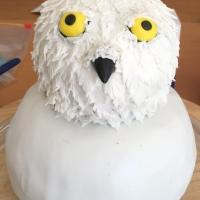 Harry Potter Kindergeburtstag #2 - Die Eulenpost Hedwig Torte